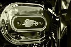 Screamin' eagle Royalty Free Stock Photos