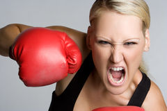 Screaming Boxer. Angry mad female boxer screaming Stock Photo