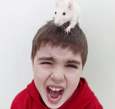 Screaming boy. Image of screaming boy with a rat Stock Photo