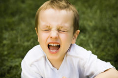 Screaming Boy. Sitting On The Grass Stock Photo