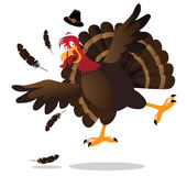Screaming cartoon turkey Stock Photography