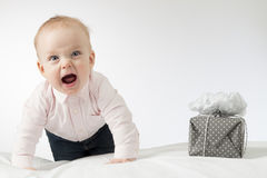 Screaming crawling infant baby looking at camera. Toddler kid with a gift on the white blanket. Horizontal stusio shot.  Stock Image