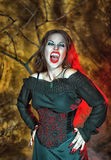 Screaming halloween vampire Royalty Free Stock Photo