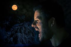 Screaming man before the full moon in a scary halloween night scene stock photography