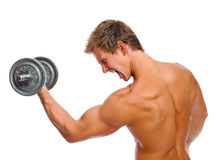 Screaming muscular man with dumbbell Royalty Free Stock Photo