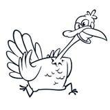 Screaming running cartoon turkey bird character.  Stock Photos