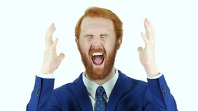 Screaming Upset Red Hair Beard Businessman. Designer , young man , handsome stock video