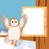 Screech-Owl on the flat tree background Royalty Free Stock Photo