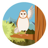 Screech-Owl on the flat tree background Royalty Free Stock Image