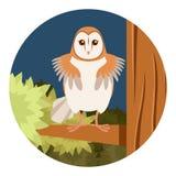 Screech-Owl on the flat tree background Stock Photo