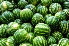 Screensaver von den grünen Wassermelonen Lizenzfreies Stockfoto