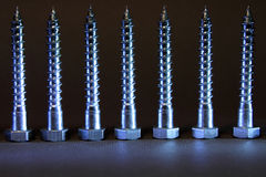 Screw_1 Foto de Stock