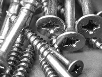 Free Screw Close-up Royalty Free Stock Images - 12570199