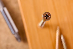 Screw in lumber Royalty Free Stock Photos