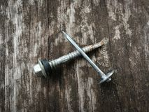 Screw nail. On the Wood floorn Stock Images