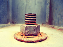 Screw and nut b Stock Image