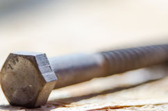 Screw nut and bolt Royalty Free Stock Photo
