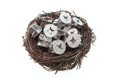 Screw nuts in bird nest Royalty Free Stock Image