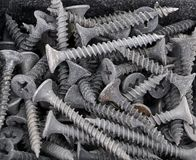 Screw for plasterboard Stock Images