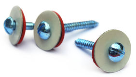 Screw with washer Royalty Free Stock Image
