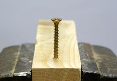 Screw in the wood Stock Photography