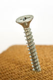 Screw in wood Royalty Free Stock Photo