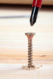 Screw and wood Royalty Free Stock Photo