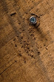 Screw with wood shavings Royalty Free Stock Photography