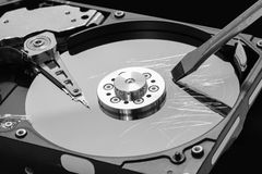 Screwdriver destroying a hard disk drive platter to erase the data Royalty Free Stock Image