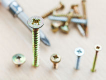 Screwdriver and different size screws Stock Images