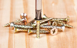 Screwdriver and many screws Royalty Free Stock Photography