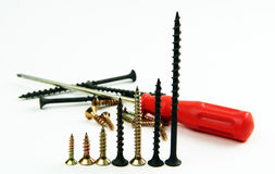 Screwdriver and screws. Stock Images