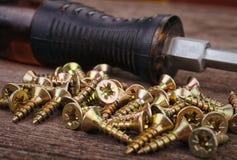 Screwdriver and screws Stock Image