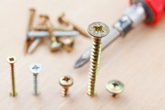 Screwdriver and screws wrapped in wooden plank Stock Photography