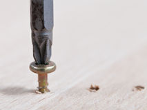 Screwdriver wraps screw Stock Images