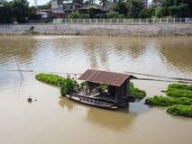 Screwpine farm on river. Royalty Free Stock Image