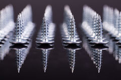 Screws. Screws line. Front focus. Concept royalty free stock image