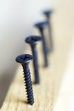 Screws. Twirled on a diagonal Stock Photography