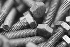 Screws. Macro of industrial cap screws Royalty Free Stock Image