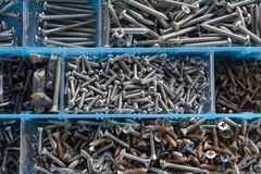 The screws. Screws neatly organized in a tool box Royalty Free Stock Image