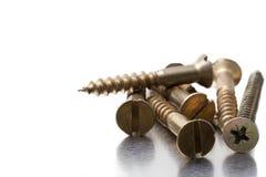 Free Screws Stock Photography - 44638802