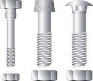 Screws vector illustration