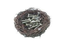Screws in bird nest Stock Images