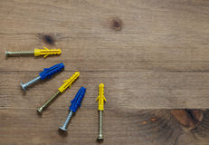 Screws with blue and yellow  dowels Stock Photo