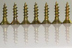 Screws  in close up with reflex Royalty Free Stock Photo