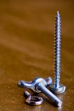 Screws collection Royalty Free Stock Photography