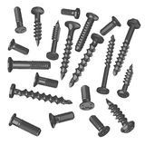 Screws collection (20) Stock Photography