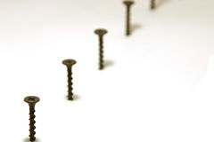 Screws in Line. With focus on the first Stock Photos
