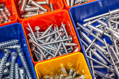 Screws located in a colorful box Stock Images