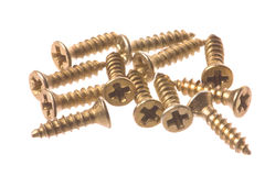 Screws Macro Isolated Stock Image